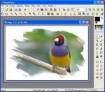 PhotoFiltre X 10.3.1 - Descargar 10.3.1